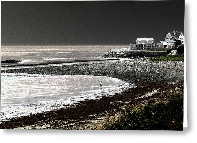 Hull Ma Greeting Cards - Beach Comber Greeting Card by Ron White