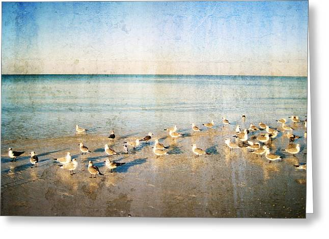 Turquoise Pastel Greeting Cards - Beach Combers - Seagull Art by Sharon Cummings Greeting Card by Sharon Cummings