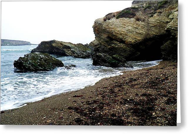 Caves Pyrography Greeting Cards - Beach Combing Greeting Card by Andrew  Stoffel