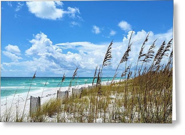 Florida Panhandle Greeting Cards - Beach Days on Pensacola Beach Greeting Card by JC Findley