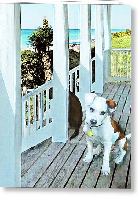 Puppies Digital Greeting Cards - Beach Dog 1 Greeting Card by Jane Schnetlage