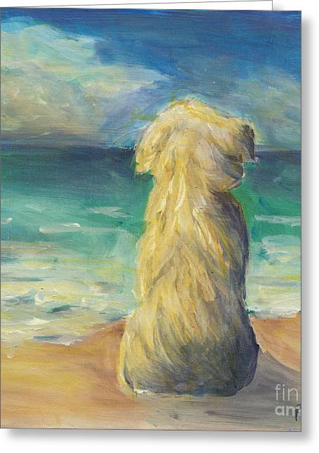 Ocean Landscape Greeting Cards - Beach Dog Greeting Card by Robin Wiesneth