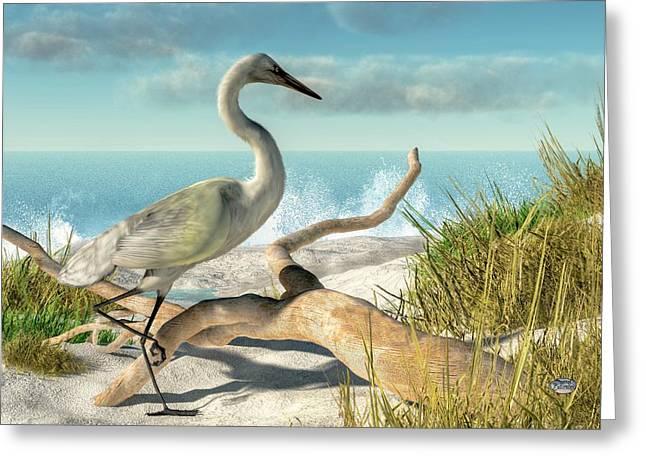 Coastal Dunes Greeting Cards - Beach Egret Greeting Card by Daniel Eskridge