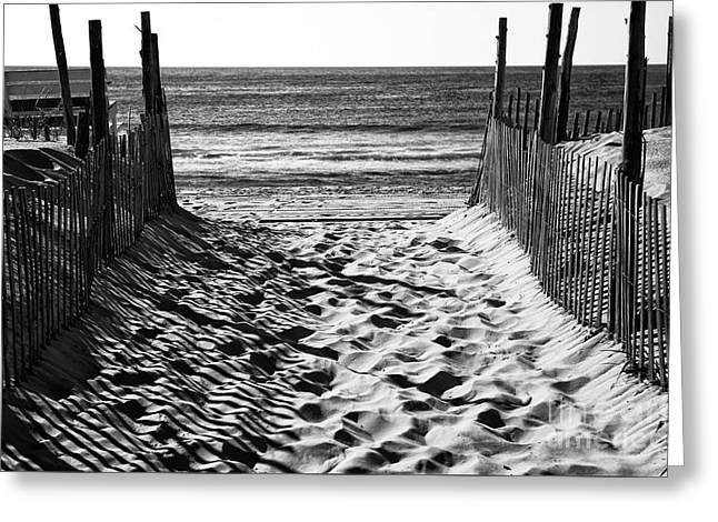 ist Photographs Greeting Cards - Beach Entry black and white Greeting Card by John Rizzuto