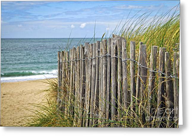Brittany Greeting Cards - Beach fence Greeting Card by Elena Elisseeva