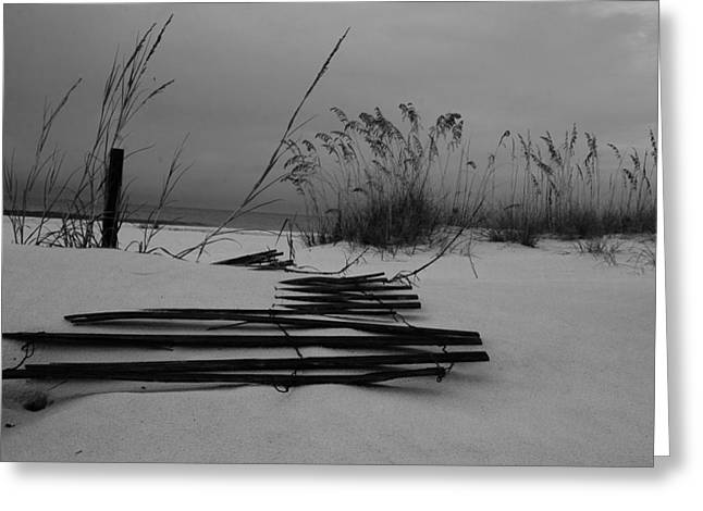 Sand Fences Greeting Cards - Beach Fence Greeting Card by Maria Suhr