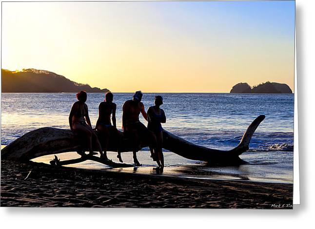 Vida Greeting Cards - Beach Friends Are Best Friends - Costa Rica Greeting Card by Mark Tisdale
