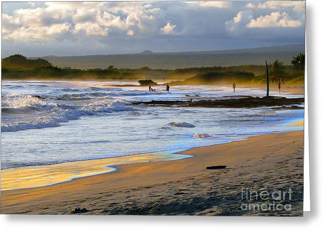 Swimmers Greeting Cards - Beach Fun At Dusk On Isabela In The Galapapgos Greeting Card by Al Bourassa