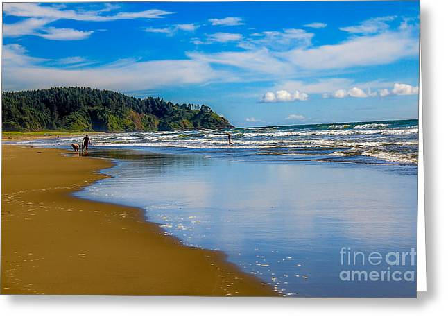 Haybale Greeting Cards - Beach Fun  Greeting Card by Robert Bales