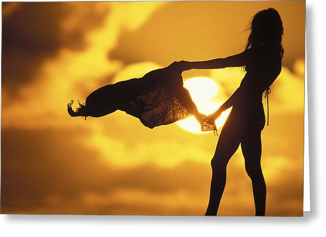 Silhouette Art Greeting Cards - Beach Girl Greeting Card by Sean Davey