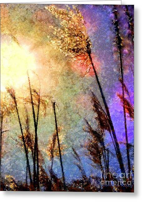 Golden Marsh Greeting Cards - Beach Grass Afternoon Greeting Card by Janine Riley