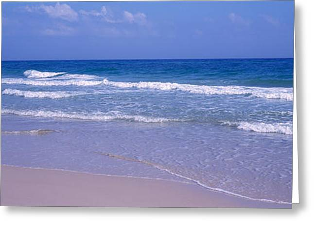 Undulating Greeting Cards - Beach Gulf Of Mexico Greeting Card by Panoramic Images