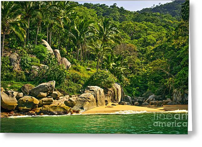 Puerto Vallarta Greeting Cards - Beach in Mexico Greeting Card by Elena Elisseeva
