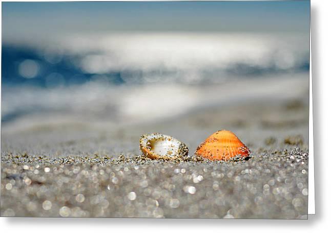 Beach Lovers Greeting Card by Laura Fasulo