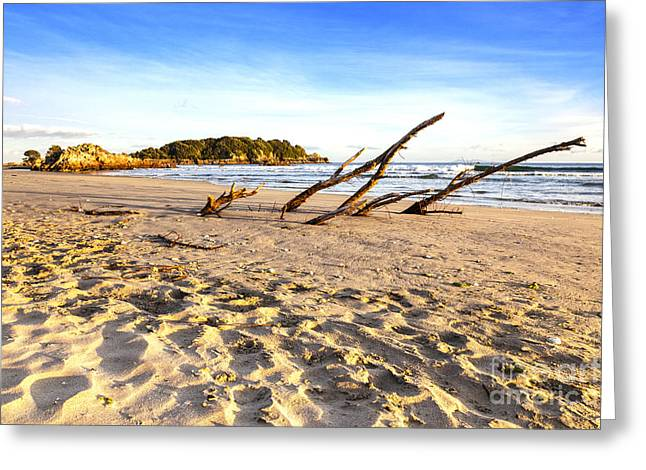Mount Maunganui Greeting Cards - Beach Mount Maunganui New Zealand Greeting Card by Colin and Linda McKie