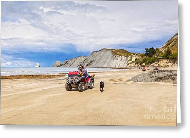 Beach Scenery Greeting Cards - Beach near Cape Kidnappers New Zealand Greeting Card by Colin and Linda McKie