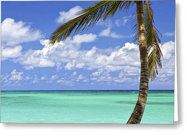 Beach of a tropical island Greeting Card by Elena Elisseeva