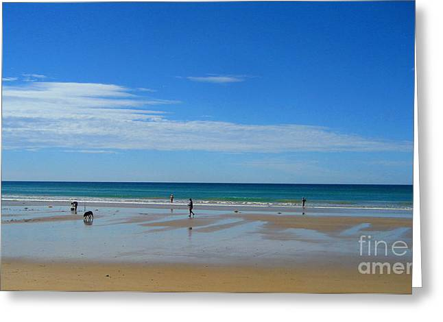 Dog Play Beach Greeting Cards - Beach of  Grand ocean road in Australia Greeting Card by Juan Jiang