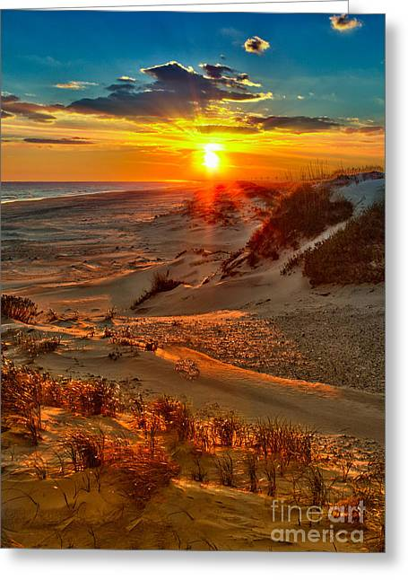 Sea Oats Greeting Cards - Beach on Fire - Outer Banks Greeting Card by Dan Carmichael