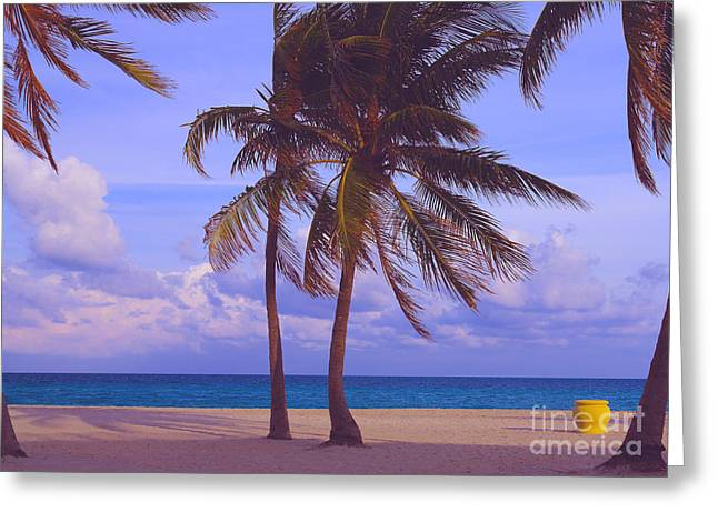 Florida Pyrography Greeting Cards - Beach Palms Greeting Card by Dan Hilsenrath