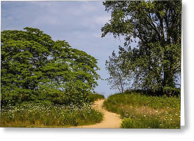 Base Path Photographs Greeting Cards - Beach Path Greeting Card by Angus Hooper Iii