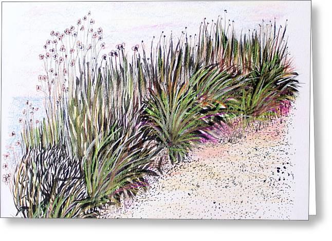 Sandy Beaches Drawings Greeting Cards - Beach Path Greeting Card by David Cardwell