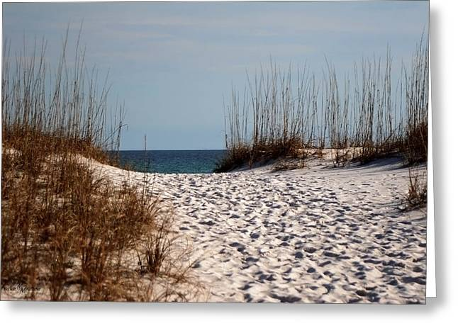 Sea Grass In The Sand Greeting Cards - Beach Path Greeting Card by Mechala  Matthews