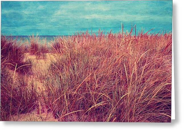 Ludington State Park Greeting Cards - Beach Path Through the Grasses Greeting Card by Michelle Calkins