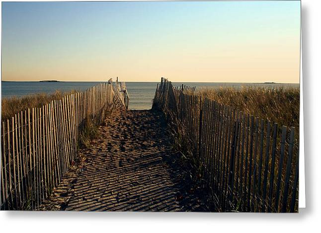 Walk Paths Greeting Cards - BEACH PATH to the SURF Greeting Card by Daniel Hagerman