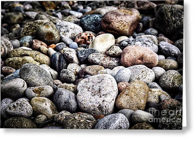 Gravel Greeting Cards - Beach pebbles  Greeting Card by Elena Elisseeva
