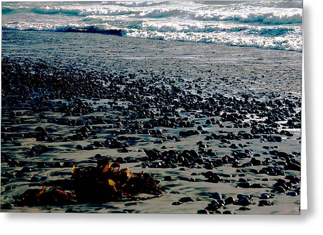 Sun Photographs Greeting Cards - Beach Pebbles with Seaweed   Greeting Card by Gilbert Artiaga
