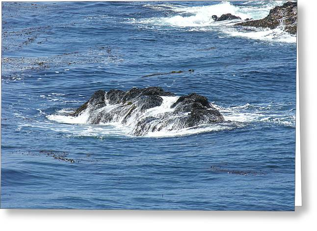Point Lobos Greeting Cards - Beach Point Lobos A Greeting Card by Mary Chappell