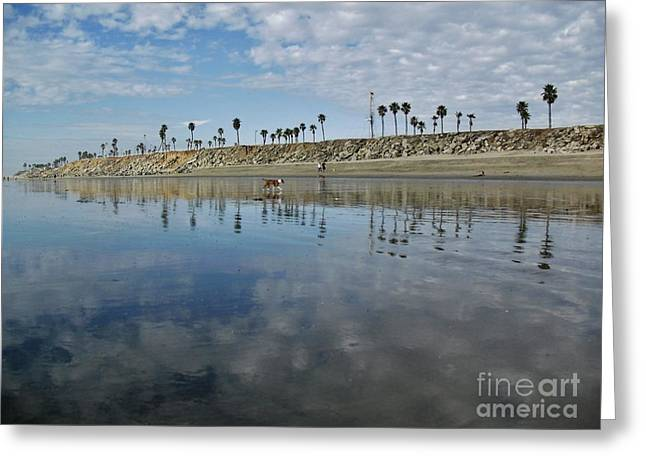 Best Sellers -  - Pch Greeting Cards - Beach Reflections Greeting Card by John Groeneveld