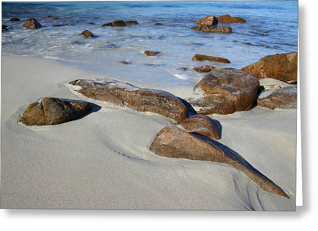 Outgoing Tide Greeting Cards - Beach Rocks Greeting Card by Fraser McCulloch