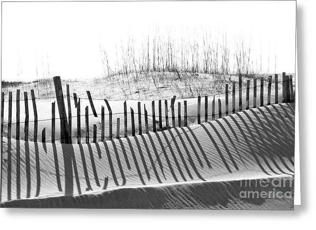 Florida Panhandle Digital Art Greeting Cards - Beach sand dune Greeting Card by Cheryl Casey