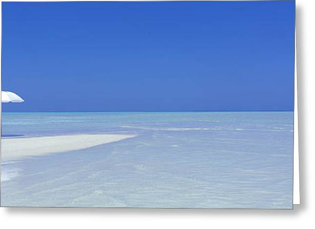 Secluded Greeting Cards - Beach Scene, Digufinolhu, Maldives Greeting Card by Panoramic Images
