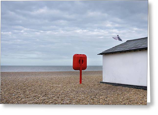 Legislation Greeting Cards - Beach scene Greeting Card by Tom Gowanlock