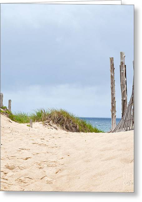 Sea Grasses On Sand Dunes Greeting Cards - Beach Sentinels on the Cape II Greeting Card by Michelle Wiarda
