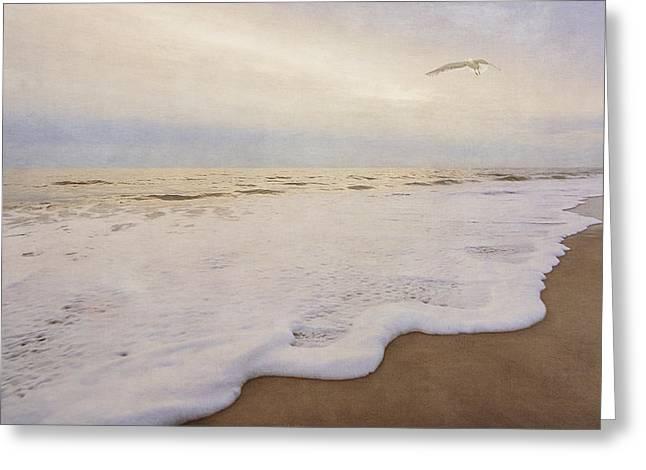 Beach Sunrise - Assateague Island - Seascape  - Vintage Greeting Card by Shara Lee