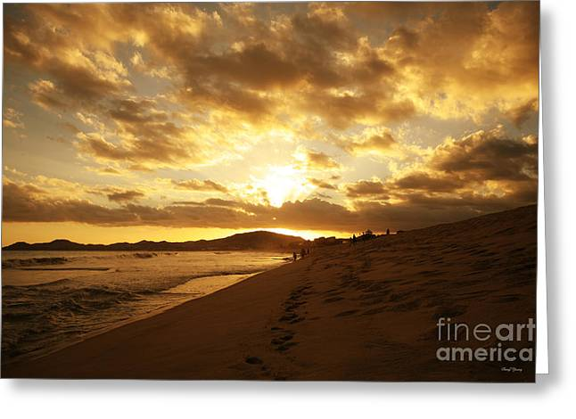 Amazing Sunset Greeting Cards - Beach Sunset Greeting Card by Cheryl Young