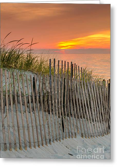 Mayflower Beach Greeting Cards - Mayflower Beach Sunset Greeting Card by Mike Ste Marie