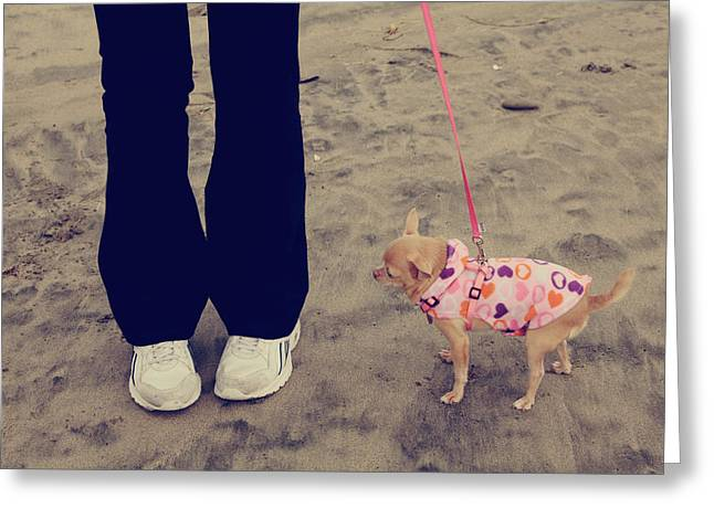 Dog Walking Greeting Cards - Beach Walk Greeting Card by Laurie Search