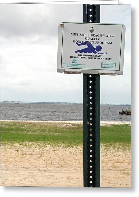 Beach Water Quality Sign Greeting Card by Jim West