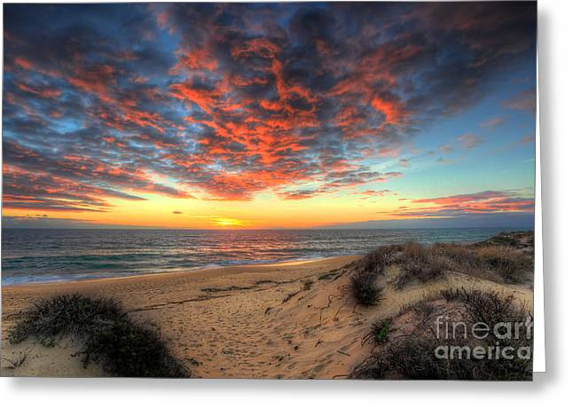 Praia De Faro Greeting Cards - Beachcombers Sunset Greeting Card by English Landscapes
