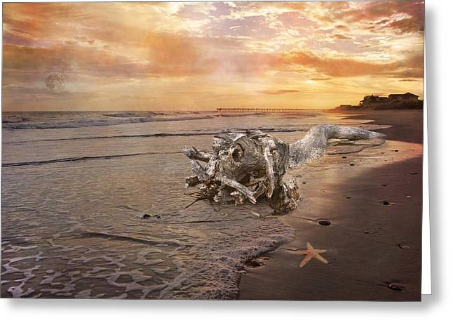 Star Fish Digital Greeting Cards - Beached Beauty Greeting Card by Betsy C  Knapp