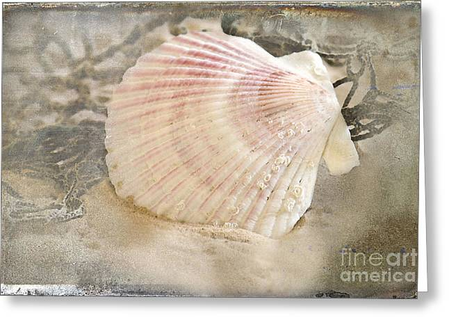 Netting Greeting Cards - Beached Greeting Card by Betty LaRue