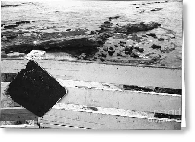 California Beach Greeting Cards - Beachside Warning Horizontal Grayscale Greeting Card by Heather Kirk