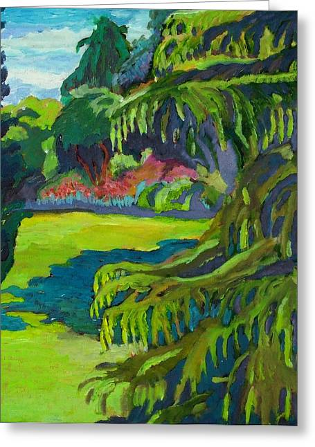 Beacon Hill Park Greeting Card by Janet Ashworth