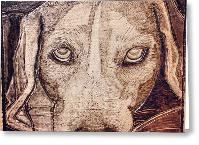 Puppies Pyrography Greeting Cards - Beagle Bailey Greeting Card by Lindsee Pitsch