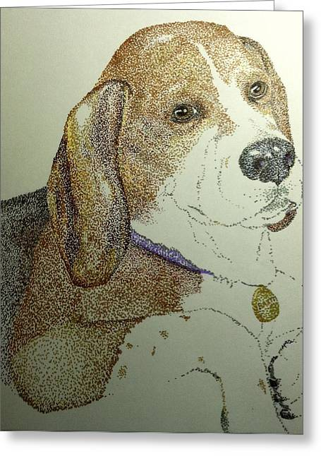 Stippling Paintings Greeting Cards - Beagle Greeting Card by Gloria Benedetto